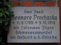 28a-Eleonore-Prochaska_m.jpg